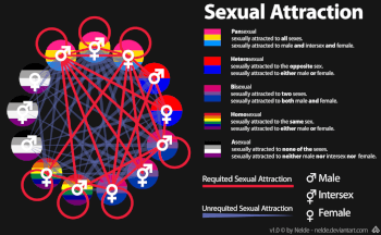 What is Sexual Attraction?
