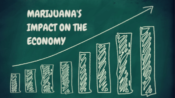 How Making Ganja Legal Boosted Economy In Colorado
