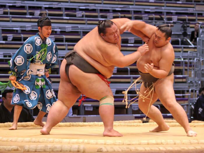 8sumo-1529910141.jpg