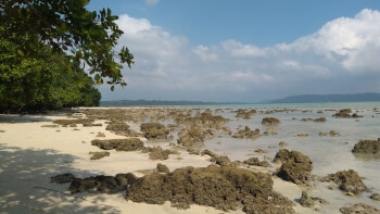 Best of Andaman