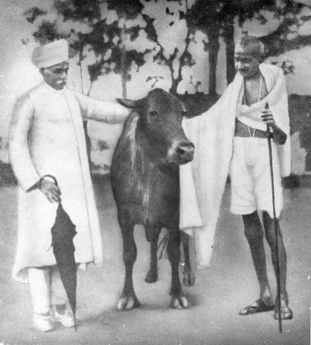Mahatma_Gandhi_with_Madan_Mohan_Malaviya-1503303585.jpeg