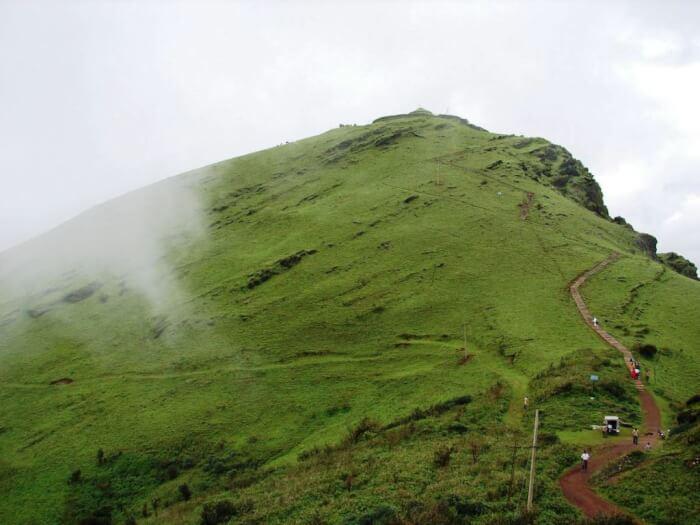 Mullayanagiri-by-vehicle-1512196675.jpg