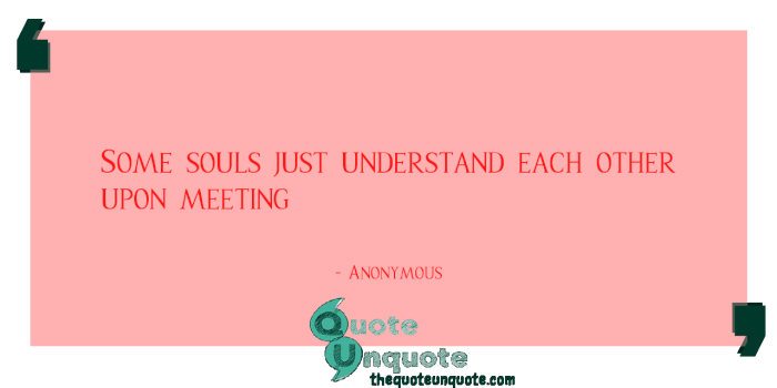 Some-souls-just-understand-each-other-upon-meeting-1533108532.png