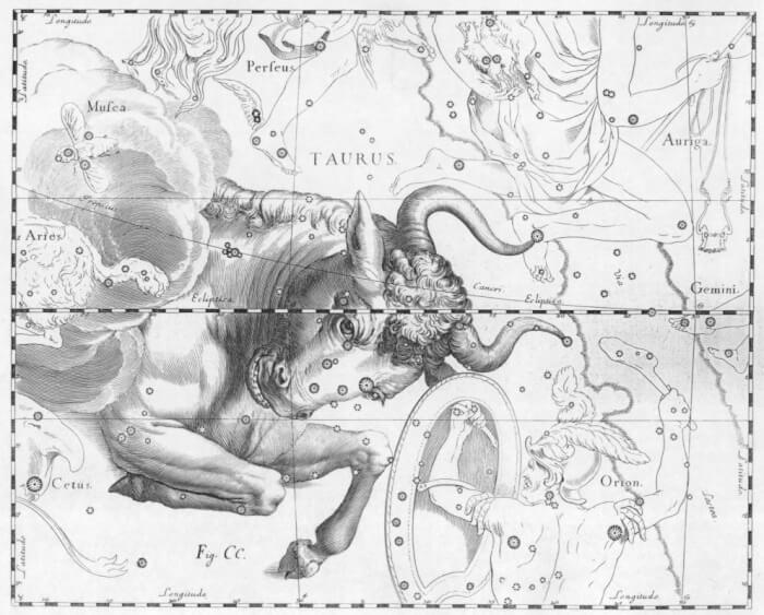Taurus_by_Johannes_Hevelius-1507792667.jpg