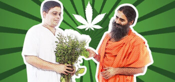 Can we Grow Cannabis in India?
