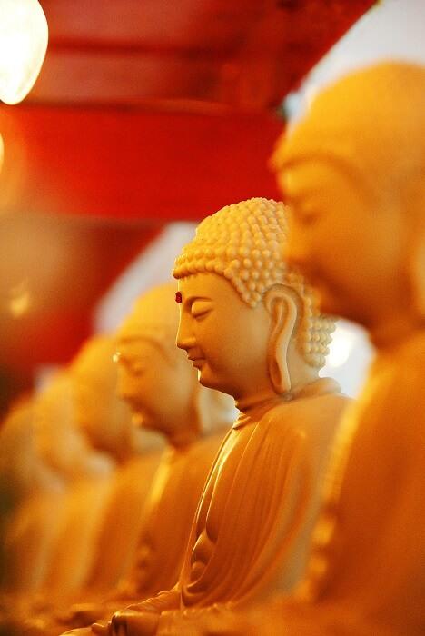 buddha-650570_1280-1503302517.jpg