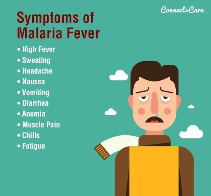 ddfb9af7c8f4db376ea21b443d75c20e--malaria-symptoms-health-care-1511582538.jpg