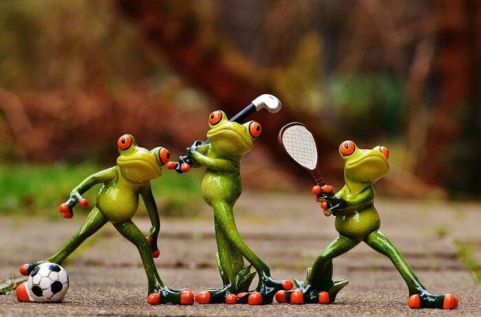 frogs-1212209_960_720-1501240668.jpg
