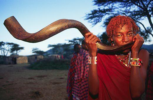 kudu-horn-africa-3-1503329292.jpg