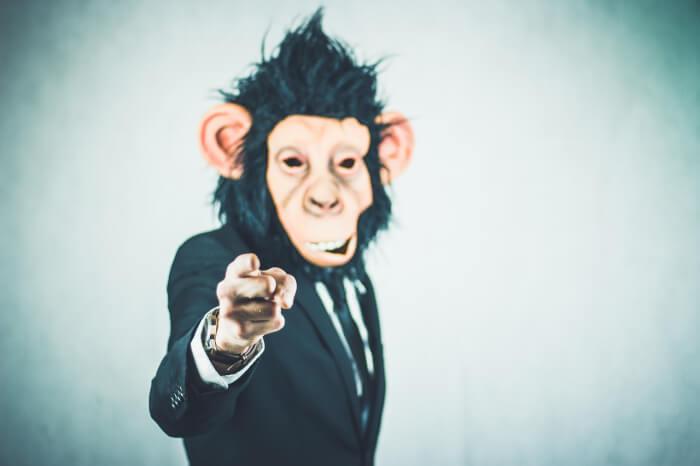 monkey-2710657_1280-1512470181.jpg