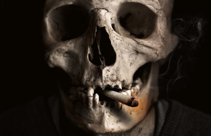 skull-and-crossbones-1418827_1280-1515046290.jpg