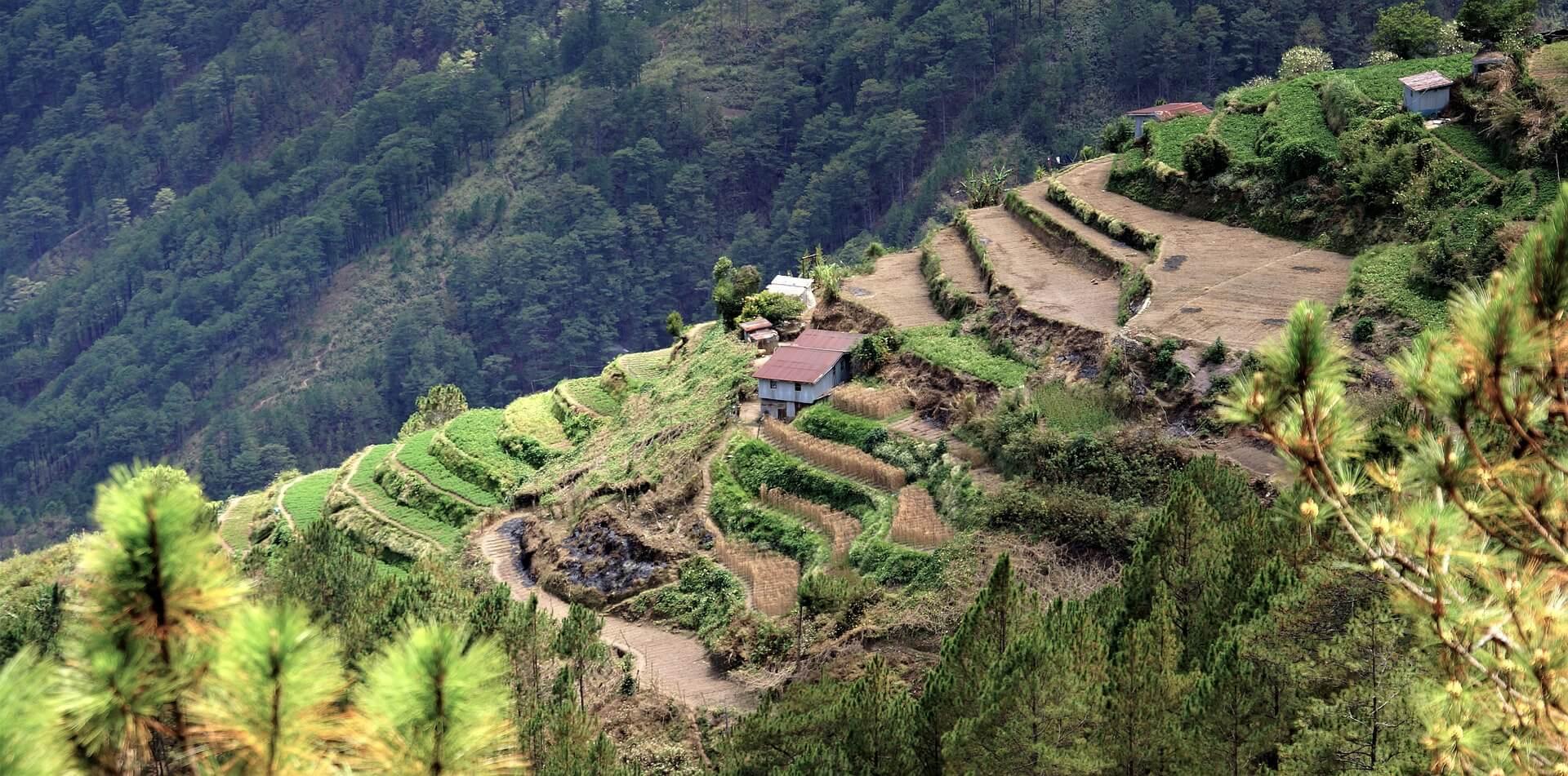 terraces-2275061_1920-1495452899.jpg