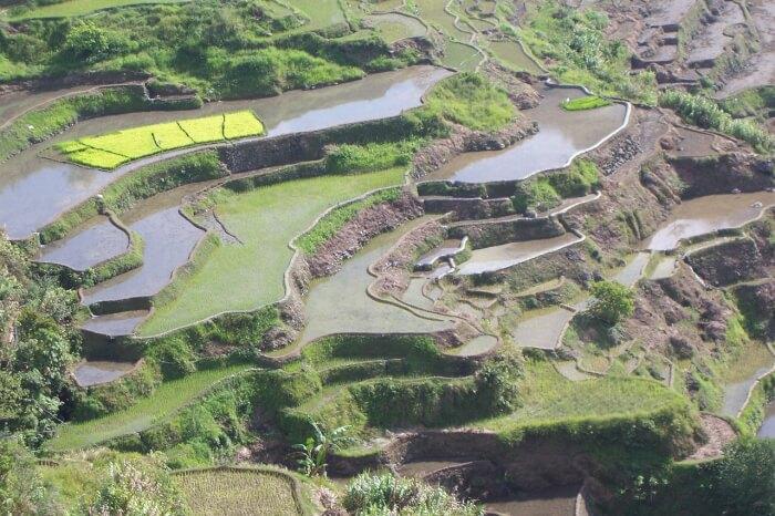 terraces-934442_1280-1497027275.jpg