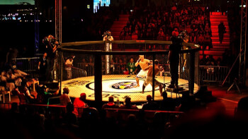 Food for thought – How people affront life after becoming a MMA fan